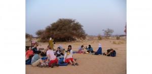 Niger Castagna Bolis