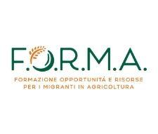 FORMA (1)